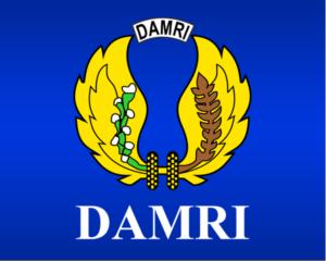 Logo Damri
